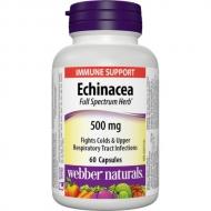 Echinacea 500 mg Webber Naturals