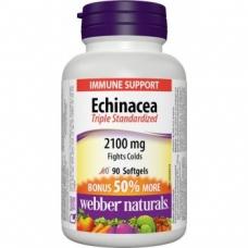 Echinacea 2100 mg Webber Naturals