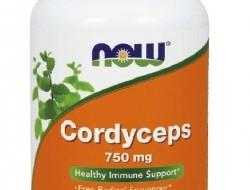 Cordyceps 750 mg Now Foods