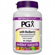 Diabetex PGX Webber Naturals